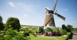 Korenmolen de Hoop Party & Events